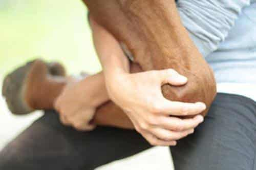 Dyrekiropraktikk med behandling av hest