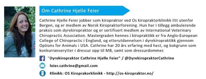 Om Cathrine Hjelle Feier