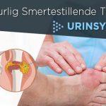 7 Naturlig Smertestillende Tiltak mot Urinsyregikt