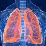 – Slik Spiser du deg til Sunnere Lunger!