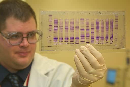 Hvordan rangeres studiene av Cochrane? - Foto Wikimedia