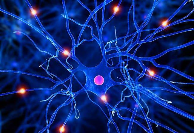 Vondt i Nervene - Nervesmerter og Nerveskader 650px