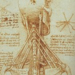 Forskning: Forekomst av myofascielle triggerpunkter ved mekanisk nakkesmerte.