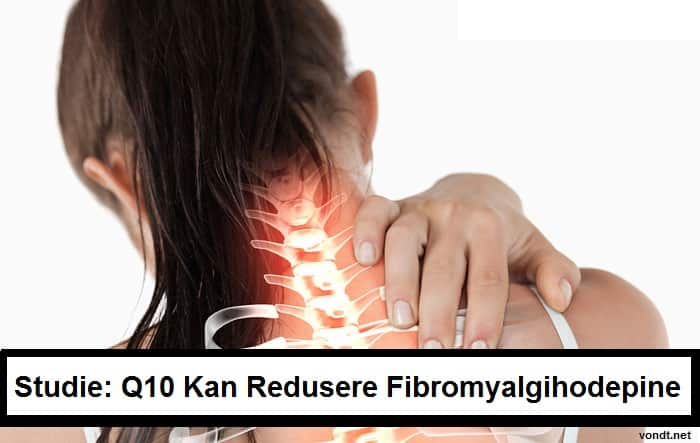 q10 kan lindre fibromyalgihodepine edited