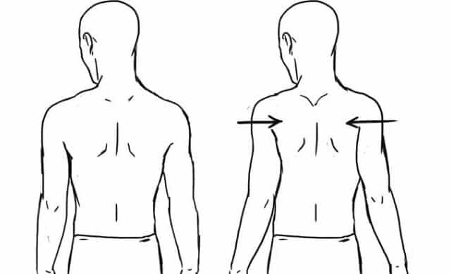 skulderblad øvelse