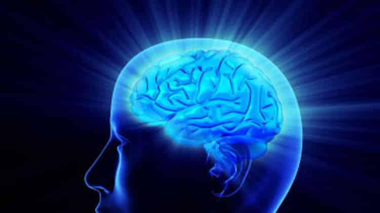 sunnere hjerne